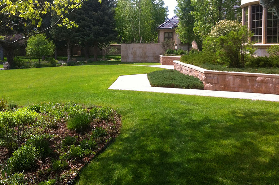 Landscaping Maintenance Programs Available